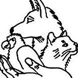 Tierhilfe-Melle e.V.
