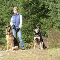 K9 Companion Dog Walking and Pet Services