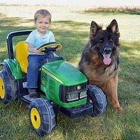 Special K9 Dog Training & Country Resort, LLC.