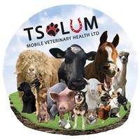 Tsolum Mobile Veterinary Health