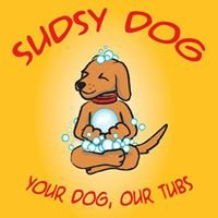 Sudsy Dog Grooming