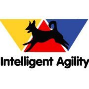 Intelligent Agility
