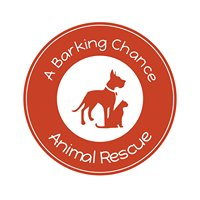 A Barking Chance Animal Rescue