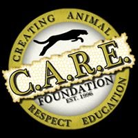 The CARE Foundation