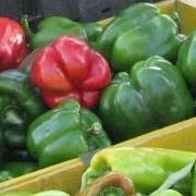 Warren County Farmers & Artisans Market