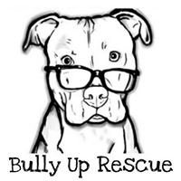 Bully Up Rescue