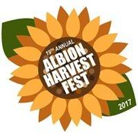 Albion Harvest Fest