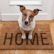 Vegan Home & Mortgage