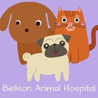 Bellson Animal Hospital
