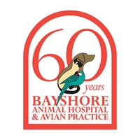 Bayshore Animal Hospital & Avian Practice