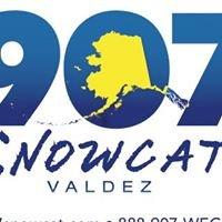 907 Snowcat, LLC