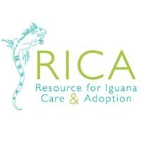 Resource for Iguana Care and Adoption