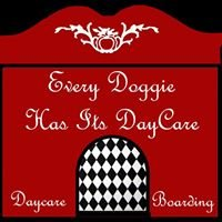 Every Doggie Has Its DayCare