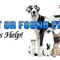 Lost and Found Pets of Barrow County.