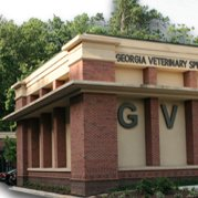 Georgia Veterinary Specialists