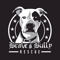 Brave Bully Rescue