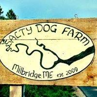 Salty Dog Farm