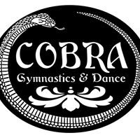 Cobra Gymnastics and Dance Center