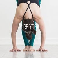 Pure Yoga - Petoskey, Bay Harbor, Harbor Springs