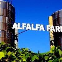 Alfalfa Farm Winery