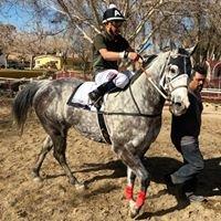 Rancho Los Alamos Carriles de Campeones
