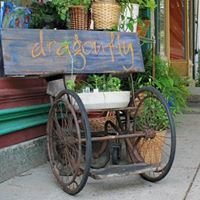 Dragonfly Art Co-op