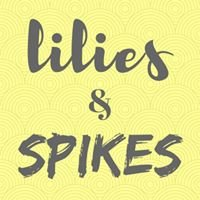 Lilies & Spikes, Kids and Teens Hair Salon and Spa