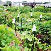 RUGN: The Racine Urban Garden Network
