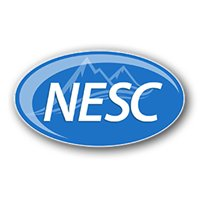 National Executive Service Corps