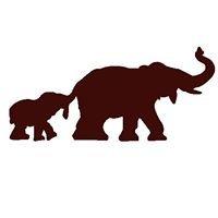Éléphant Chocolat