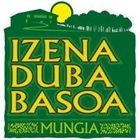 Izenaduba Basoa