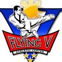 Flying V Martial Arts
