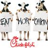 Chick-fil-A Northport