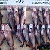 Santee Cooper Catfishing Guide