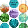 Uprising Seeds