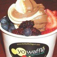 YoWaffle Yogurt