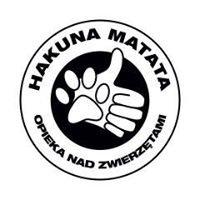 Hakuna Matata - PSI Hotelik