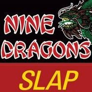 Nine Dragons Restaurant & Slap Shot Pizza
