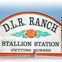 DLR Stallion Station