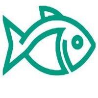 Fishy Stitches & Gifts