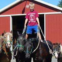 The Strain Family Equestrian Center