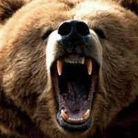 CrossFit Grizzly
