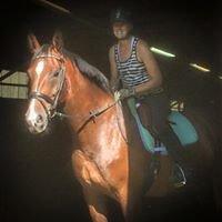 Gorham Equestrian Center