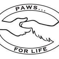 Small Paws Dog Rescue and rehoming centre