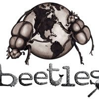 Beetles: Science and Teaching for Field Instructors