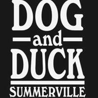 Dogand Duck Summerville