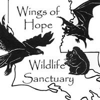 Wings of Hope Wildlife Sanctuary