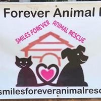 Smiles Forever Animal Rescue
