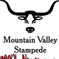 MVS Special Needs Rodeo
