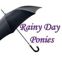 Rainy Day Ponies, LLC